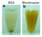 Comparison Blockmaster And Bsa By JSR Life Sciences